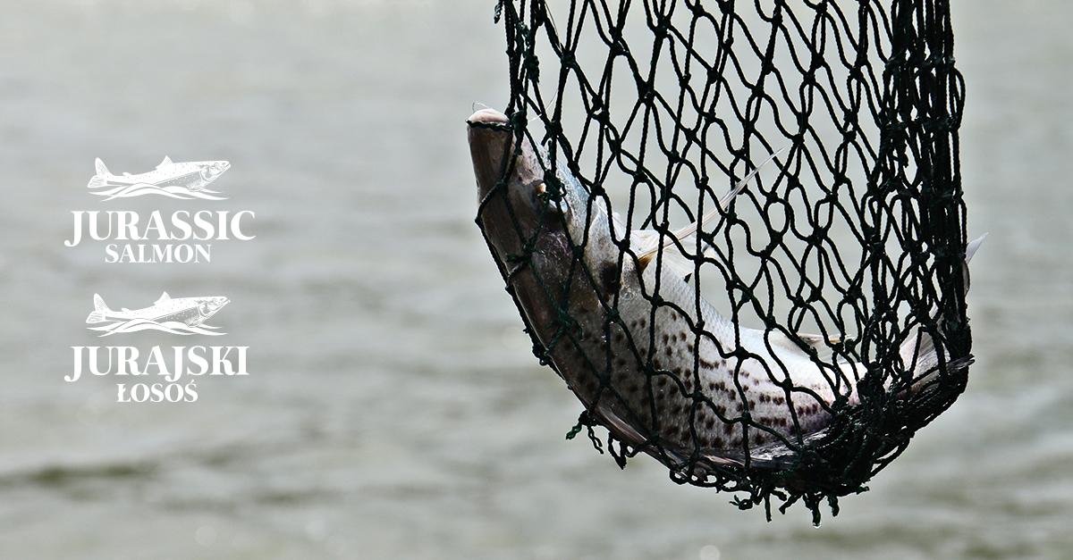 Nielegalny połów ryb